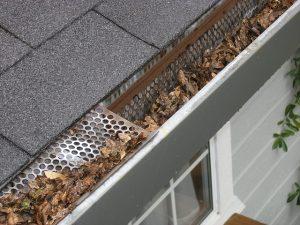 Fall Home Maintenance Tips - Yard Maintenance - Stone Insurance Group