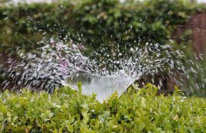 Sprinkler Water-Save It-Springwood Marketing, LLC