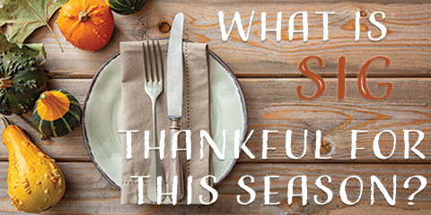 What is Stone Insurance Group Thankful For This Season? You!- Stone Insurance Group